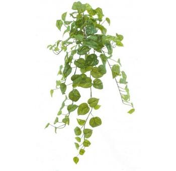 Planta colgante Photos verde artificial